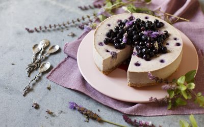 Blueberry and Lavender Cheesecake